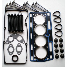 CLIO KANGOO TWINGO 1.2 8V 2001-06 D7F DIET HEAD GASKET SET & BOLTS & VALVES X 8